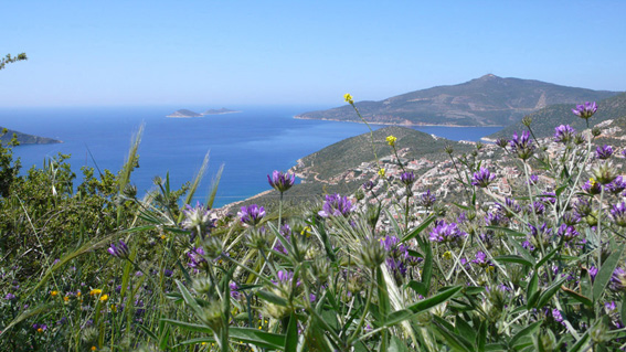 View of Kalkan bay